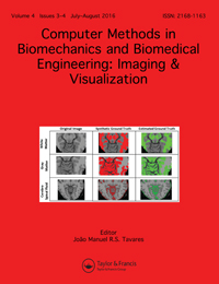 Publications frames methods in biomechanics and biomedical engineering imaging visualization issn 2168 1163 print 2168 1171 online taylor francis group fandeluxe Gallery